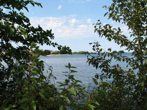 A scene in Heritage Park of the Collingwood harbour close to the shore.