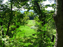 You can click this small image to view a rotating series of scenic photos taken on the Bruce Trail.
