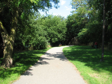 A trail scene in Heritage Park near the harbourfront in downtown Collingwood.